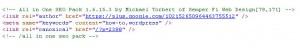 All In One SEO hidden HTML meta tag