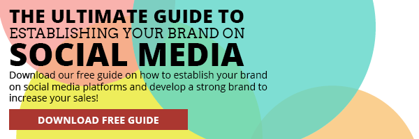 establish-brand-on-social-media-guide
